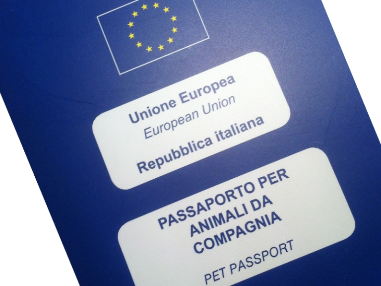 passaporto-animali-domestici.jpg