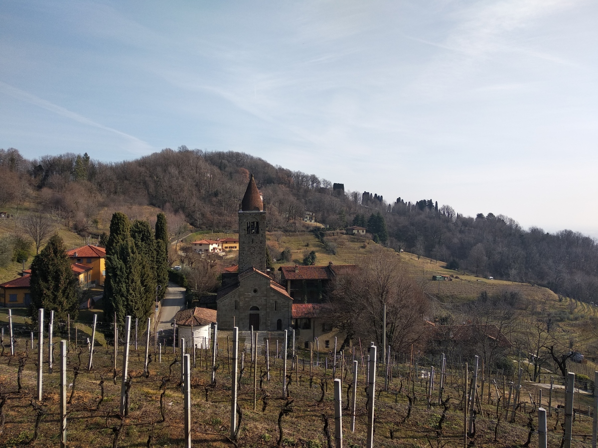 Il Monte Canto tra storia, vigne ed oliveti